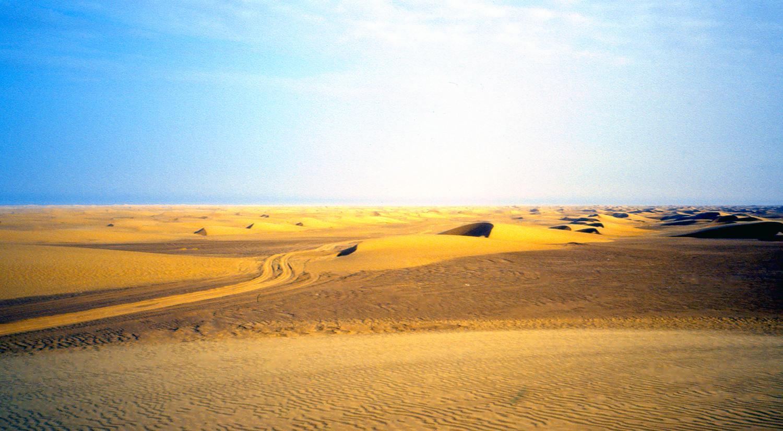 desert_img094